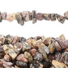 Leopardskin jasper chips, 5-11mm, 90cm strand