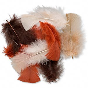 Feather mix, turkey, fall colors, 10pcs